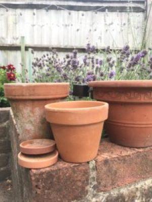 Terracotta pots - using pretty flower stencils for pot