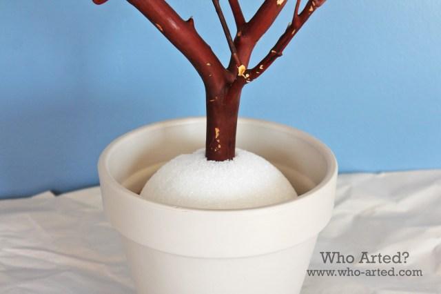 Manzanita Tree 06
