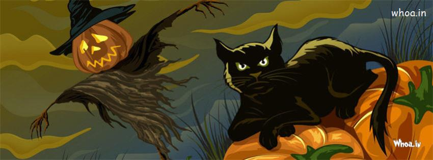 Amisha Patel 3d Wallpaper Halloween Black Cat Cartoon Fb Cover