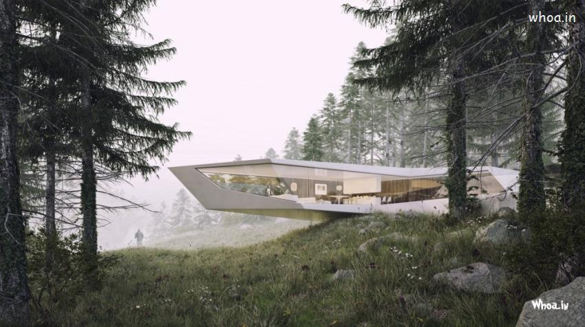 Very Cute Baby Hd Wallpaper White Cantilever Amazing Modern Home In Forest Hd Wallpaper