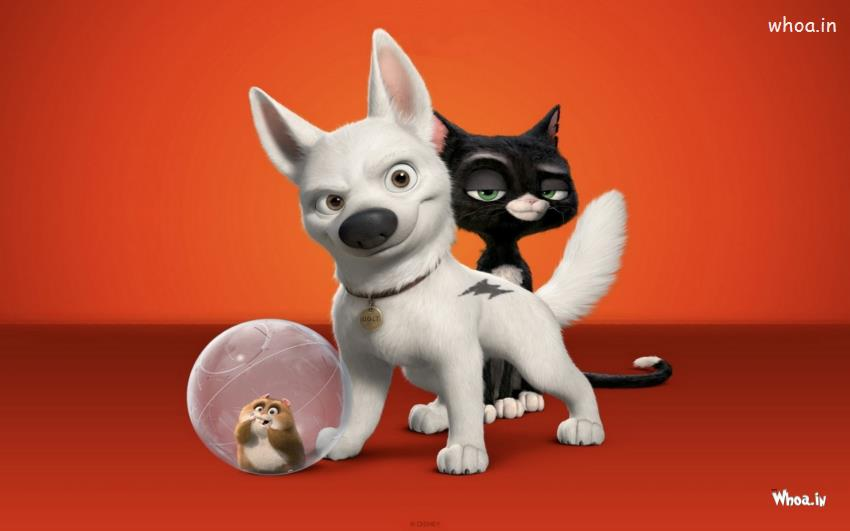 Lord Shiva Black Hd Wallpapers White Dog And Black Cat With Orange Background Animated
