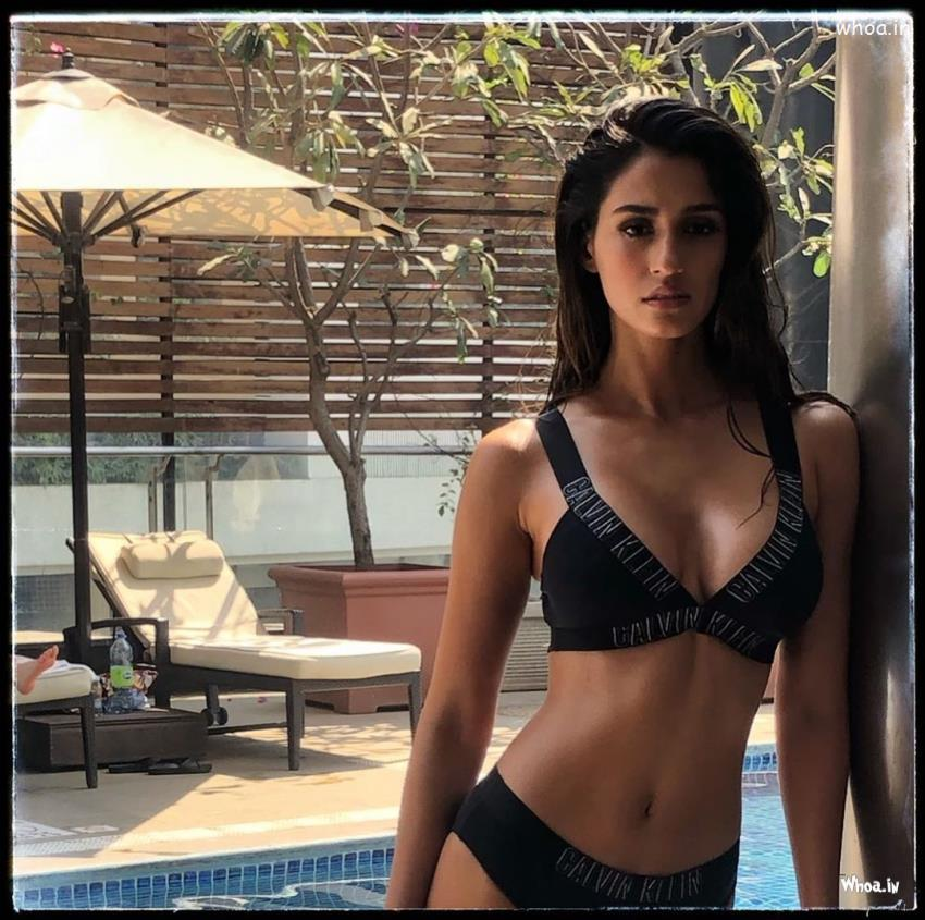 Happy Holi Hd Wallpapers With Quotes Disha Patani Calvin Klein Hot Amp Bold Sexy Image Hd Images
