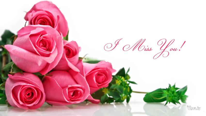 Good Morning Cute Baby Hd Wallpaper Image Of I Miss You With Pink Roses