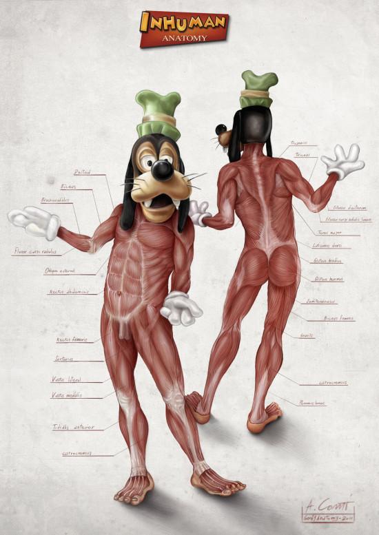 goofy_s_anatomy_by_alessandroconti-d5swrox
