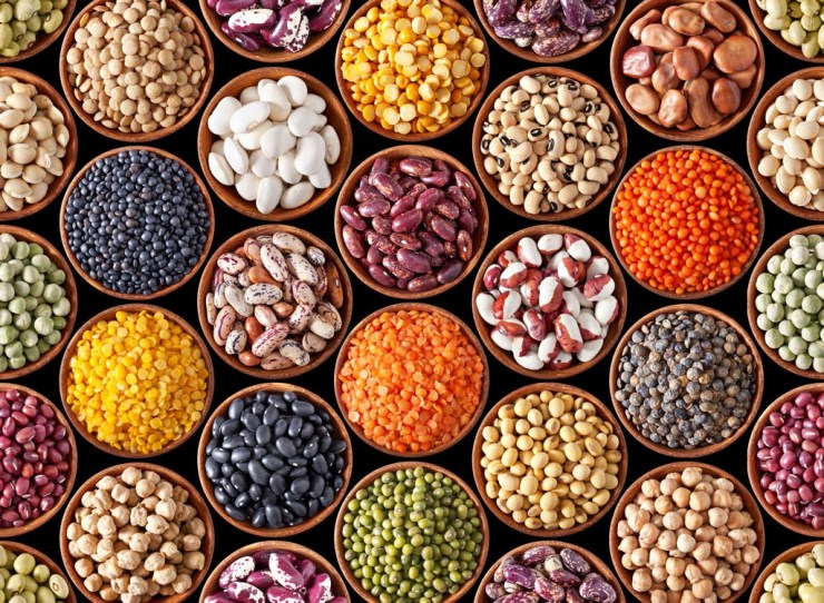 Beans, legumes and legumes