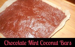 Organic Chocolate Mint Coconut Bars