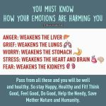 Did you know that emotions have a profound effect onhellip