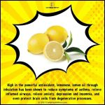 Lemon is such a wonderful fruit that is packed withhellip