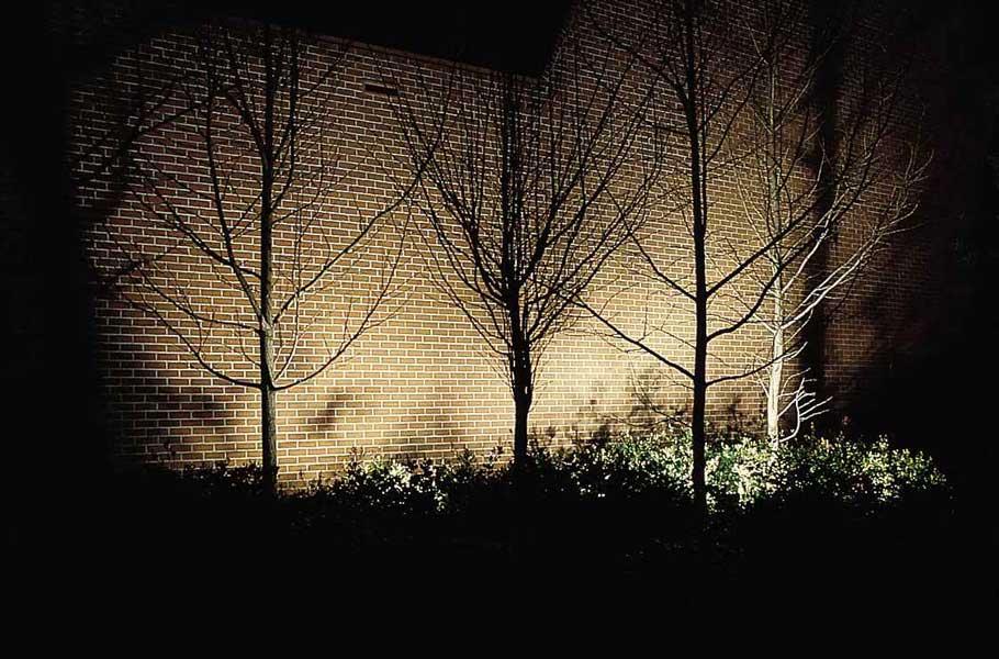 Outdoor Directional Lighting