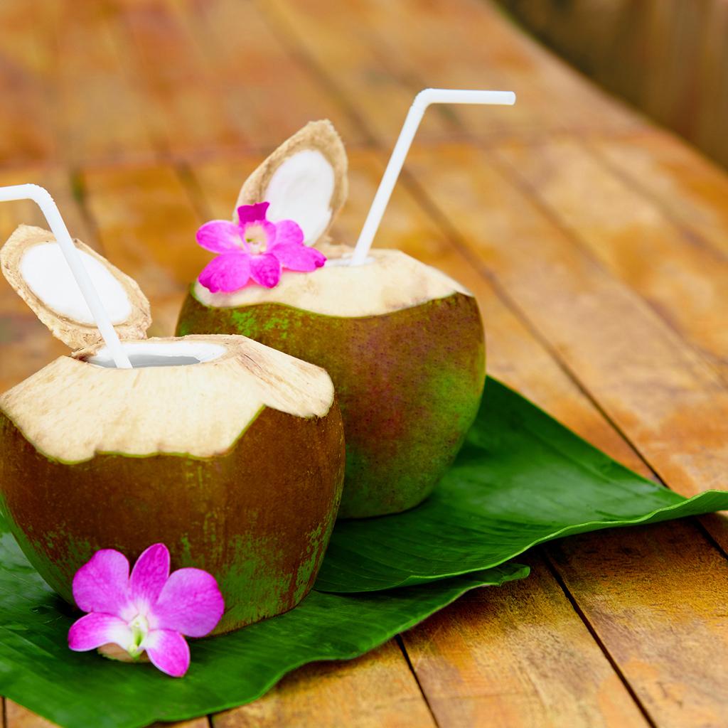 Crafters Choice Hawaiian Coconut Fragrance Oil 171