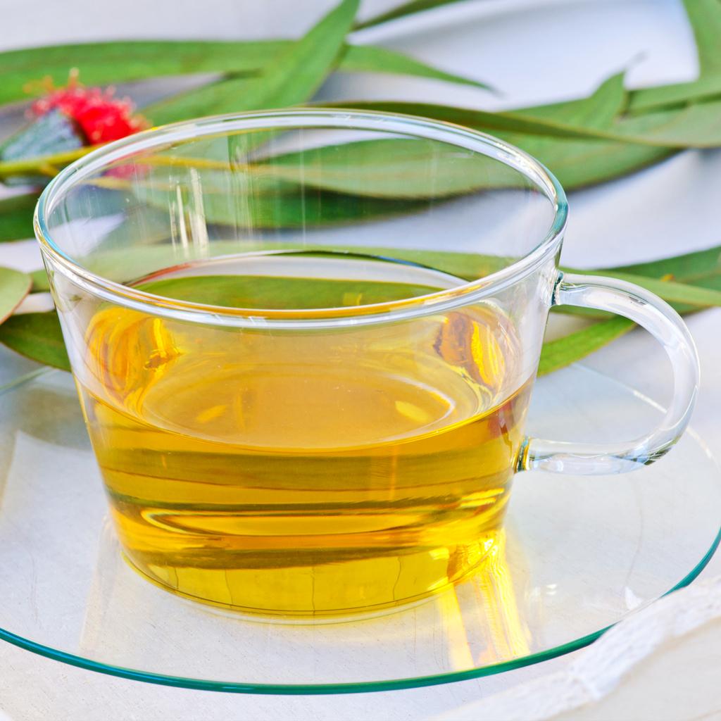 Crafters Choice Eucalyptus Tea Fragrance Oil 850