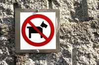 RV Dogs Not Allowed Campground