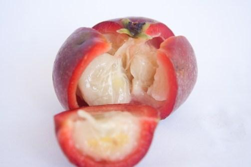Ayruvedic Health Benefits of Kokum (Kokam) Amsul