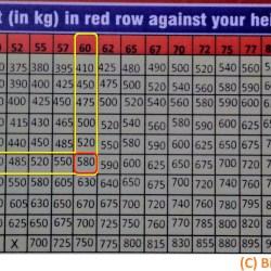 Biswaroop Roy Chowdhury diet chart