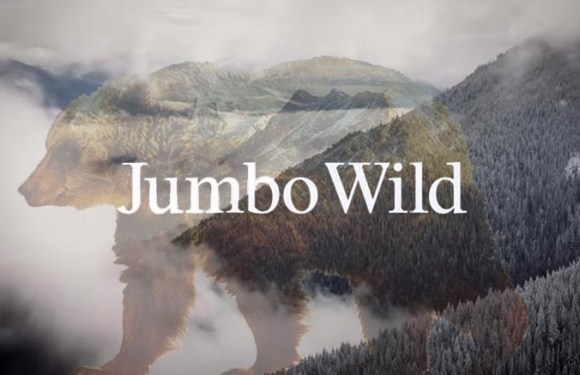 Jumbo Wild: documentary review