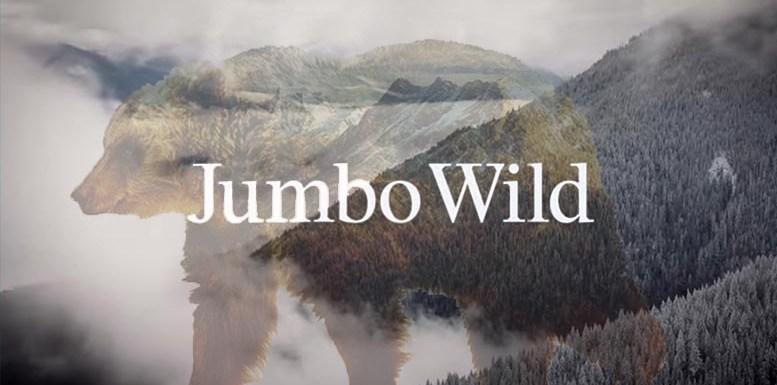 Jumbo Wild: documentary review