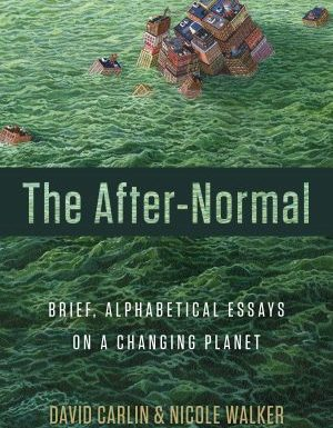 The After-Normal | Excerpt by David Carlin