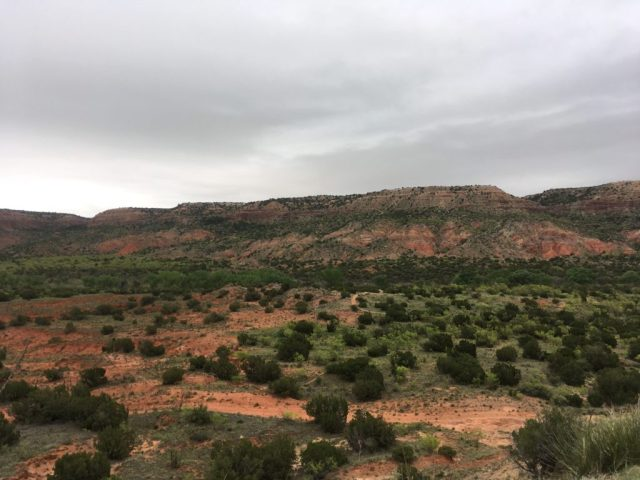Palo Duro Canyon, TX: painted hills in the background with arid landscape and shrubs in the foreground