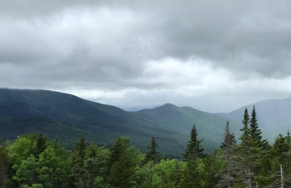 "Guest Post: ""The White Mountains in Early June"""