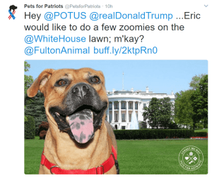 Pets for Patriots Tweet