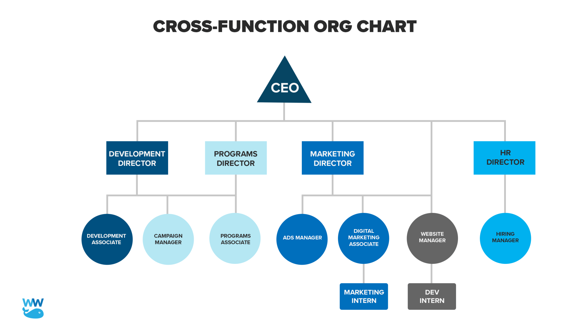 hight resolution of for even more types of org charts and for profit examples check out this resource from pingboard