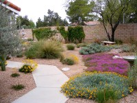 desert landscape ideas for backyards - Desert Landscaping ...