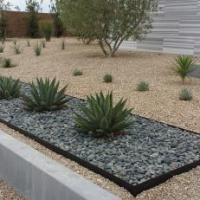 desert landscaping arizona