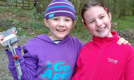 Go Ape Junior at Grizedale – Review