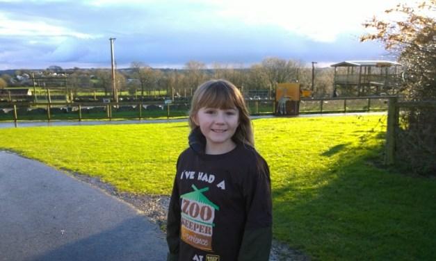 Zoo Keeper Experience at Folly Farm, Wales