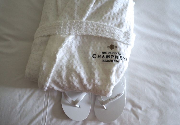 champney springs review