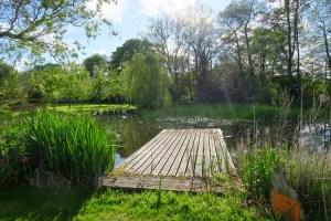 wild swimming featherdown farms