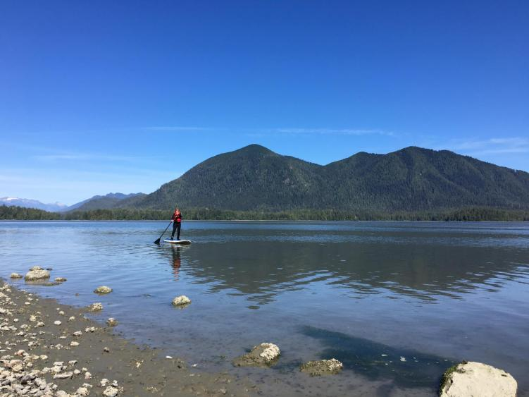 paddleboarding in tofino