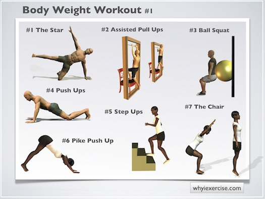 chair gym workout videos covers dollar tree body weight exercises an illustrated home strengthening routine