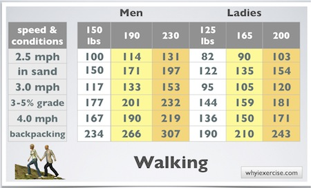calories burned during exercise walking