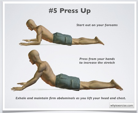 exercises for low back pain press up