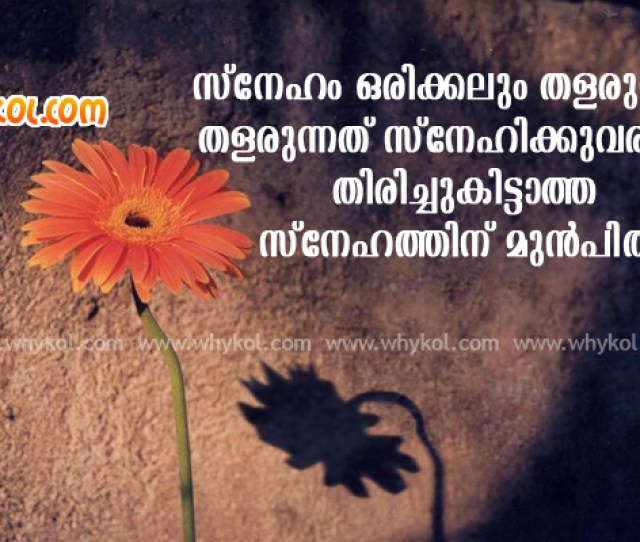 Latest Sad Love Quotes Malayalam Iyu Me Love Is Mater