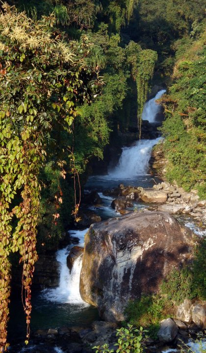 himalayan waters