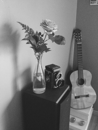 Rolleiflex and its rose
