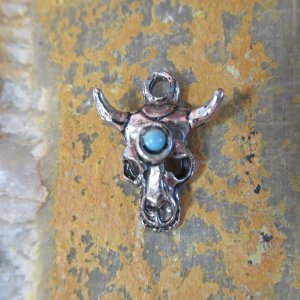 Silver Desert Skull Charm