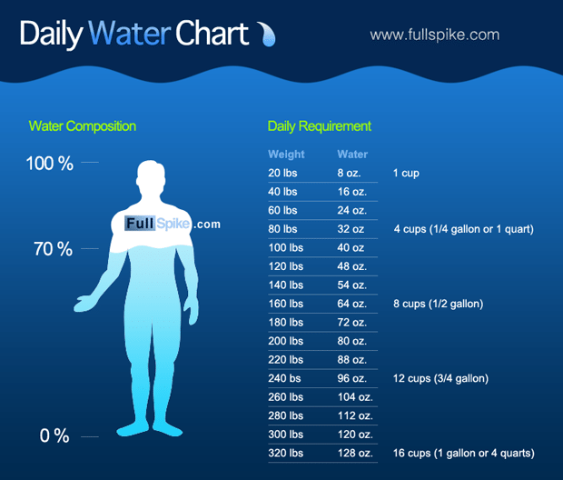 Daily Water Chart