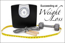 Succeed at Weight Loss 2013