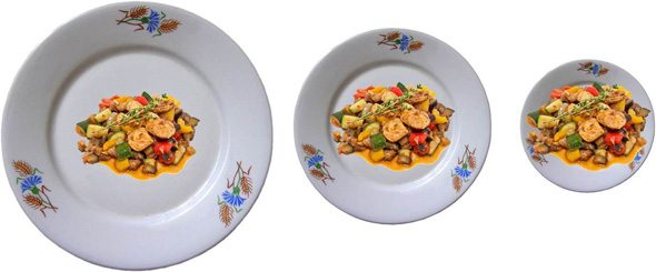 Image result for plate portion 1960 - 2010