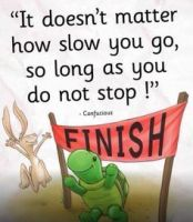 Choose to be the tortoise, not the hare 2