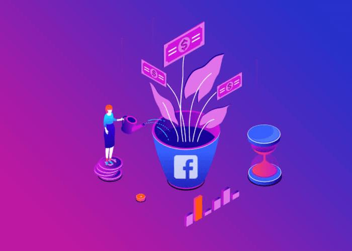 Canalizzazione annunci Facebook