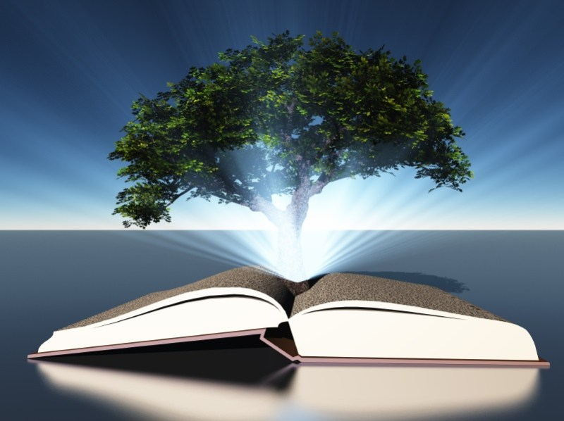 Tree Rooted In Book