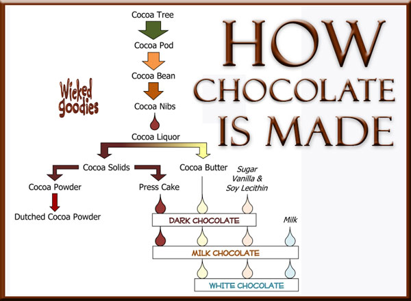 How Chocolate is Made by Wicked Goodies