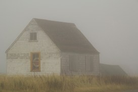 One House in the Fog