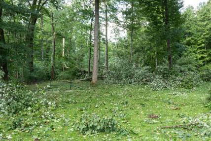 Tornado Damage Hammock