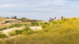 Dune Hang Out