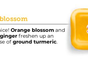 Ginger BlossomScentsy Wax Bar